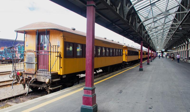 dunedin-train