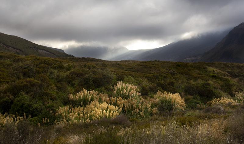 Tongariro beginning